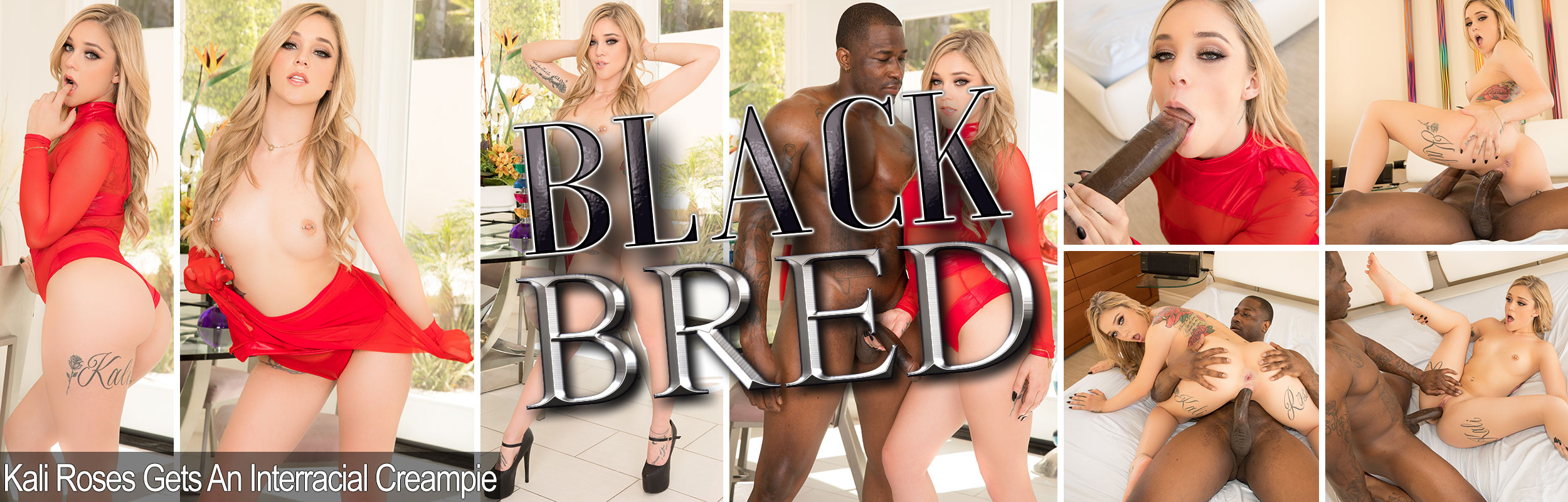 Kali Roses Gets An Interracial Creampie