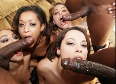 Ultimate Big Black Cock Orgy